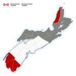 (Update) A special weather statement is in effect via Environment Canada