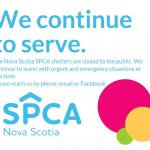 The Dartmouth SPCA will continue to operate with a core group of essential staff to assist and accept animals in urgent and emergency situations during this time.