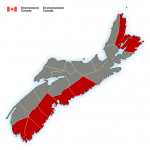 (Ended) Rainfall warning issued by Environment Canada