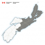 (Ended) A wintery mix is expected for Thursday into Friday, triggering a special weather statement via Environment Canada.