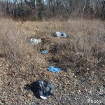 Annual spring cleanup & maintenance program underway