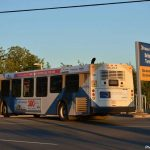 Police charge bus driver in vehicle/pedestrian collision