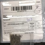 CFIA update on unrequested packages of seeds