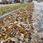 Annual Fall Street Leaf Cleanup Program begins Monday, Nov. 16