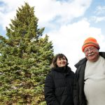Tree for Boston Dedicated to Frontline Health-Care Workers