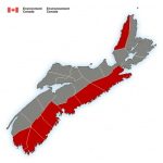 (ENDED) Rain and wind warnings have been issued via Environment Canada
