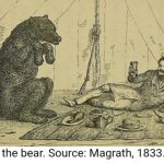 It's 2 February, and you know what that means: Bear Day!