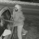 Police seek suspect in property damage