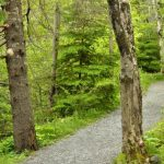 Park and trail safety tips